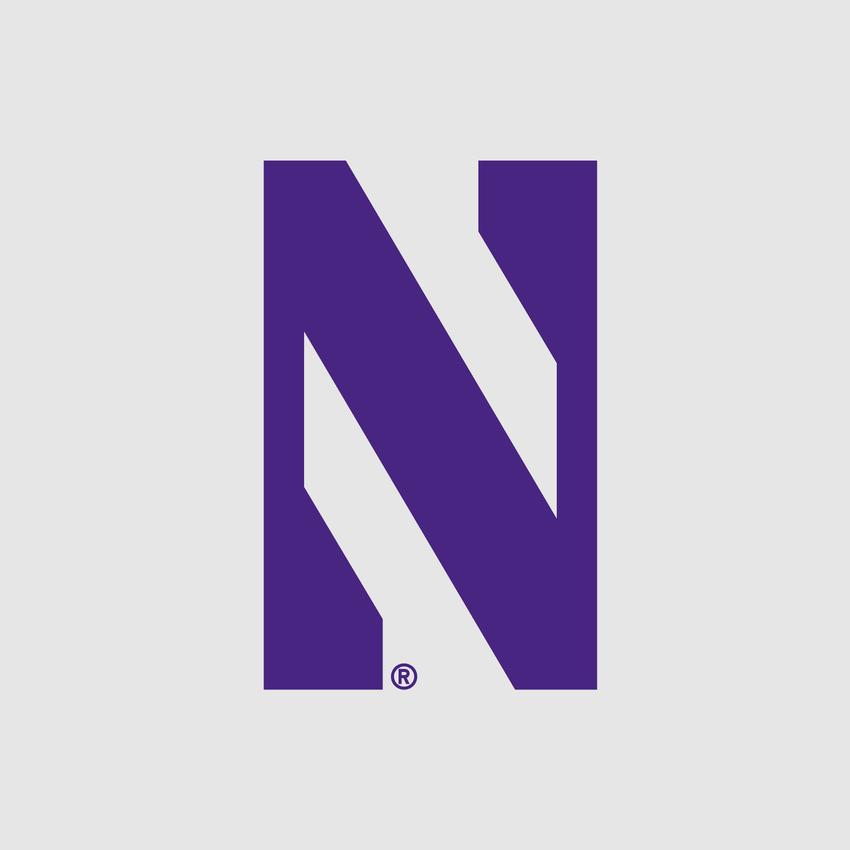 The Northwestern University Travel Umbrella, , medium